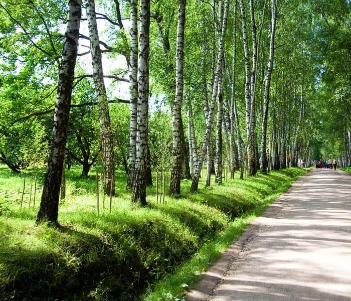 Экскурсии в загородном отеле ГРУМАНТ Resort & SPA, недалеко от Москвы, Тульская область