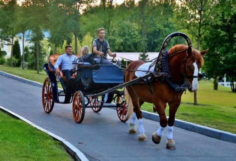 Катание в карете, семейный отдых в загородном отеле ГРУМАНТ Resort & SPA, недалеко от Москвы
